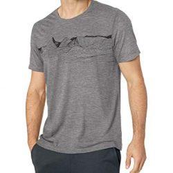 Icebreaker Merino Men's Tech Lite Short Sleeve Crewe Pyrenees Athletic T Shirts, Medium, Gritstone Heather 5